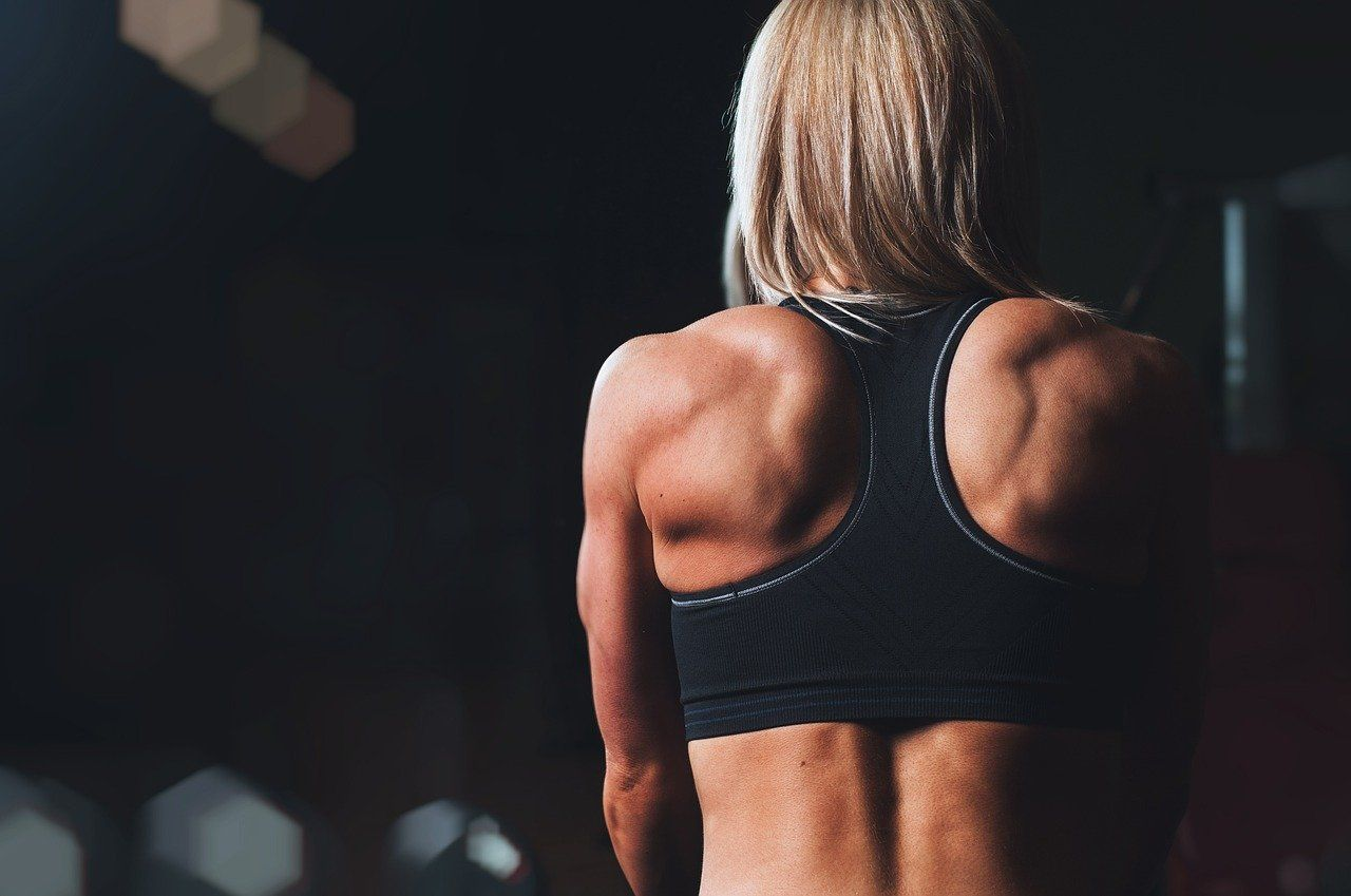 training, rmuscles, back